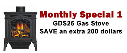 GDS25_monthly Special