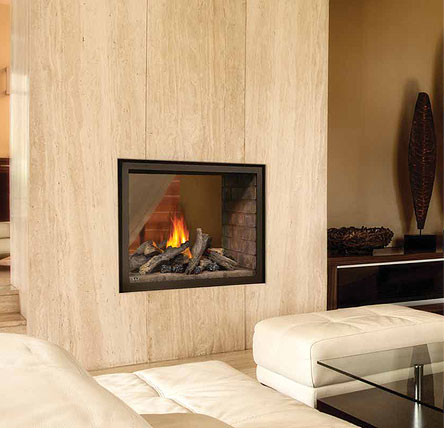 Napoleon Hd4 Multi View Fireplace Fireplacepro