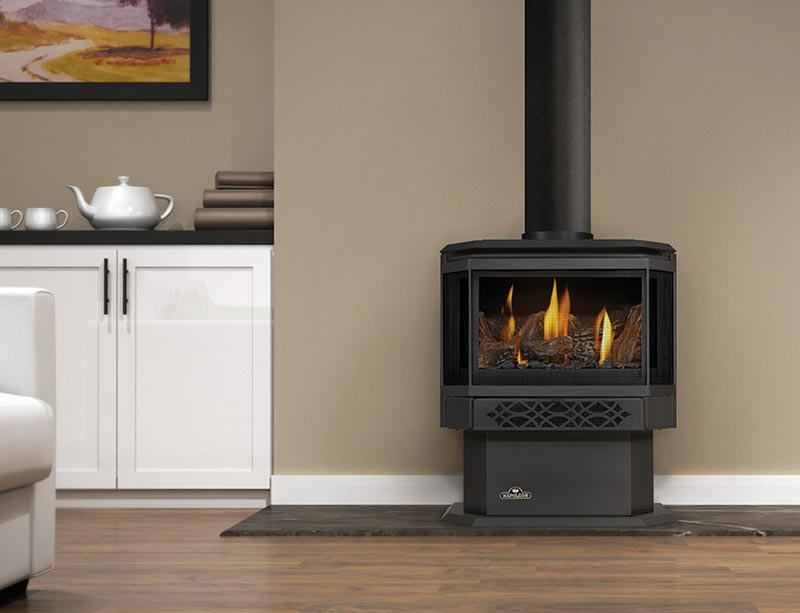 Napoleon Haliburton Gds28 Direct Vent Gas Stove