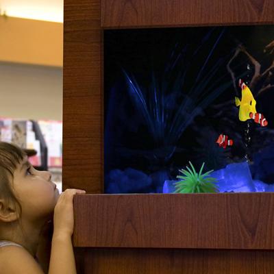 Dimplex Opti-V Aquarium Installed