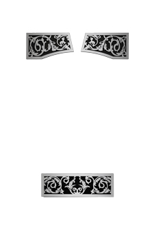 Image of Brushed Stainless Steel Victorian Ornamental Insets VOIK for Napoleon Vittoria gas fireplace