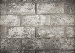 Glacier Standard Decorative Brick Panels