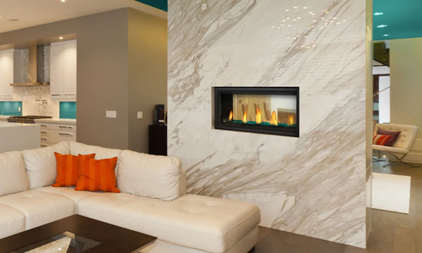 Napoleon Vector 38 see-through direct vent gas fireplace