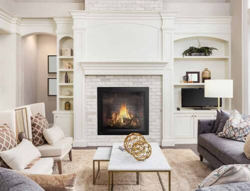Napoleon Fireplaces – Company Profile